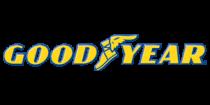 goodyear_301 x 151